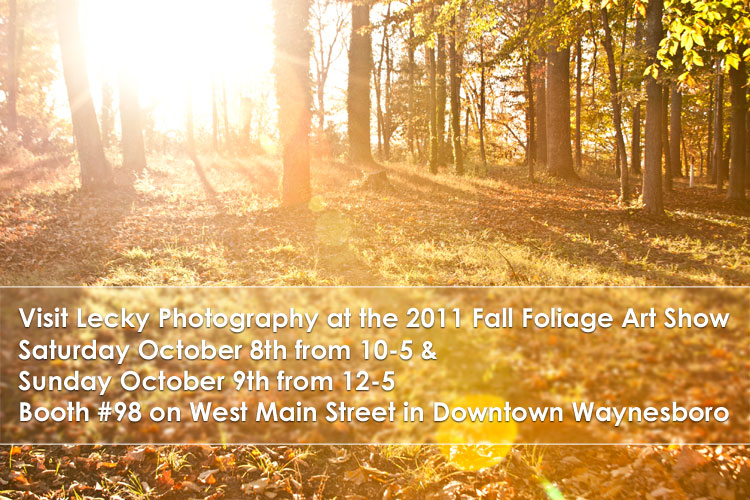 Fall Foliage Art Show 2011